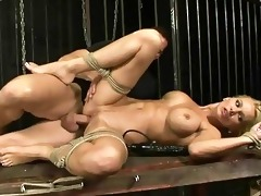 breasty d like to fuck acquires bondaged and